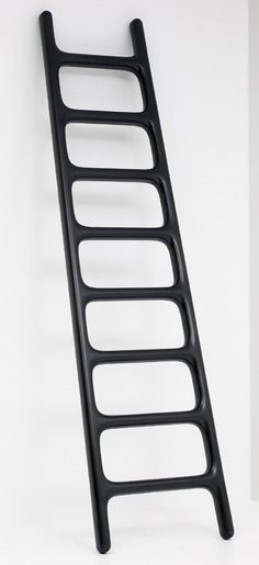 Carbon Fiber Ladder