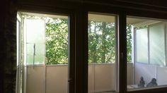 kimmo framelius: nautin kotona istuen kaikesta ajastani