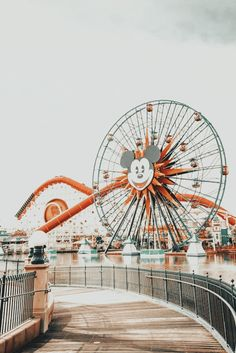 Disney Aesthetic, Aesthetic Images, Aesthetic Backgrounds, Aesthetic Iphone Wallpaper, Travel Aesthetic, Aesthetic Photo, Aesthetic Wallpapers, Bedroom Wall Collage, Photo Wall Collage