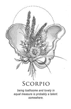 Amrit Brar& Portfolio - Book IX: The Body and The Wreckage Scorpio Art, Zodiac Signs Scorpio, Scorpio Woman, Zodiac Art, Sagittarius, Scorpio Tattoos, Elf Rogue, Ascendant Lion, Half Elf
