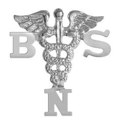 NursingPin - Bachelor of Science in Nursing BSN Graduation Pin in Sterling Silver $24.99