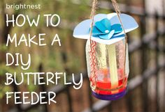 Attract Butterflies By Making A DIY Feeder in 6 Simple Steps