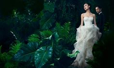 Vera Wang | Wedding Dresses, Bridal Gowns, Designer Clothing