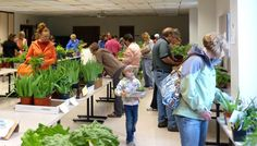 Places to go: Dodge County Master Gardener Plant Sale #dcfairwi #EventVenue #Flowers