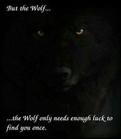 The wolf only needs enough luck to find you ONCE More