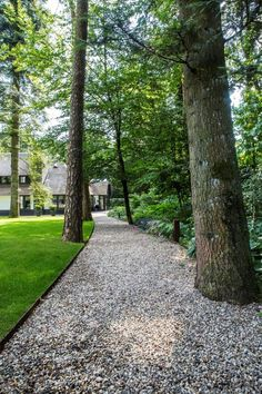 Good looking brick walkway Modern Landscaping, Outdoor Landscaping, Garden Pool, Garden Paths, Back Gardens, Outdoor Gardens, Outdoor Walkway, Brick Walkway, Home Garden Design