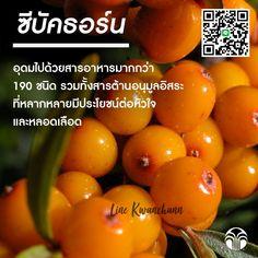 Juice, Vitamins, Vegetables, Breakfast, Food, Morning Coffee, Vegetable Recipes, Eten, Juices