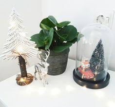 accessoires voor kerst. stolp van de hema