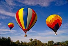 Carolina Balloonfest! Buy 1 Ticket Get 1 Ticket FREE