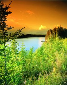 Take a nature walk in Whiteshell {Manitoba}. Canada Trip, Visit Canada, Canada Travel, Beautiful Vacation Spots, Great Vacation Spots, Western Canada, Life Aquatic, Travel And Tourism, Walking In Nature