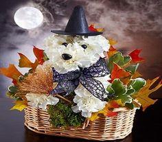 Witchy Pooch in Prescott AZ, Allan's Flowers & Prescott Valley Florist