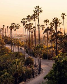 "itscaliforniafeelings: ""Los Angeles, California by Ezequiel Aguilar"" California Travel Honeymoon Backpack Backpacking Vacation Santa Monica, City Aesthetic, Travel Aesthetic, Summer Aesthetic, Los Angeles Wallpaper, Places To Travel, Places To Visit, Photo Voyage, Los Angeles Travel"