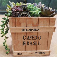 15 cm//18 cm Moss Ball jardiniere pot Costume Orchid ou petite plante jardin Décoration