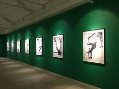 LONDRES É PURA ARTE!  #Arte #exposição #Londres #Museu #SaatchiGallery #TateBritain #Viagem