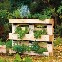 Palettenkräuterwand aus dem Buch Garten-Projekte für Selbermacher // BLV Buchverlag blv.de  Garten DIY Palette Kräuter Balkon