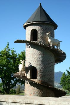 Discover The Goat Tower of Fairview Cheese & Wine Farm in Paarl, South Africa: The original goat tower, the one that started it all.
