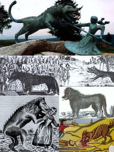 Several traditional depictions of the Beast of Gevaudan. An ancient wolf, werewolf (loupgarou), mass murderer, or mass hysteria from south of France.