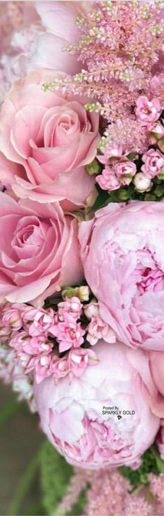 New Flowers Beautiful Pink Floral Arrangements Ideas Amazing Flowers, Beautiful Roses, Pink Flowers, Beautiful Flowers, Beautiful Gardens, Pink Petals, Exotic Flowers, Yellow Roses, Paper Flowers
