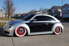Dream beetle
