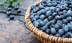 How to Grow 4 Different Types of Berries - blueberries, strawberries, rasberries & blackberries, plus a link to some useful information on buying & cooking berries and recipes.
