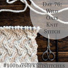 100 days of knit stitches // Wild Oats Knit Stitch Knitting Stiches, Arm Knitting, Knitting Needles, Crochet Stitches, Knitting Designs, Knitting Patterns, Crochet Patterns, Knit Stitches For Beginners, Creative Knitting
