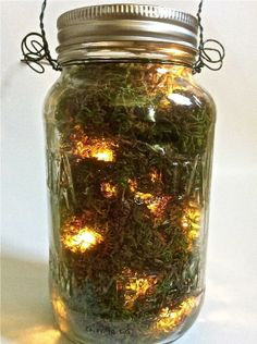 Mason jar filled with moss and fairy lights! To hang from trees!