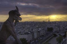 Gargoyle's Quest #photo #paris