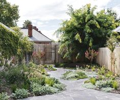 A meandering path links a series of spots for entertaining and exploring in this Adelaide garden inspired by art. Back Gardens, Small Gardens, Path Design, Garden Design, Design Ideas, Courtyard Design, Design Concepts, Diy Design, Olive Garden