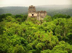Tikal en Petén