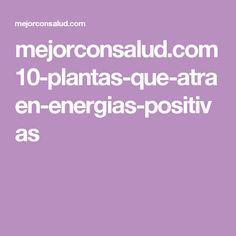 mejorconsalud.com 10-plantas-que-atraen-energias-positivas