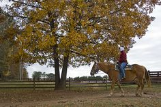 Ode to Autumn and Ranch Delights