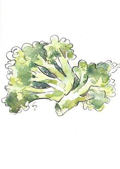 Original Watercolor Painting of Broccoli. This is one of a kind, handpainted broccoli illustration. Brighten your kitchen wall with these gorgeous broccoli, lovingly created just for you! Or give it to someone special as a wonderful and unique keepsake or gift. Painted with high quality watercolors and watercolor ink on 300 gsm watercolor paper. Measures 5 by 7 inches. Frame is not included. The painting will be shipped in a clear cellophane sleeve with a backing board to help protect you...