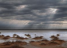Karoo — Obie Oberholzer - Northern Cape after the rains - my home. Trout, Cape, Beautiful Places, Africa, Clouds, Sky, Sunset, Photography, Travel