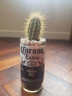 Corona Beer Bottle Cactus Planter Corona Beer, Fathers Day Gifts, Beer Bottle, Cactus, Planters, Gift Ideas, Beer Bottles, Plant, Window Boxes