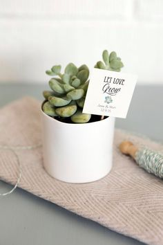 This Set of 25 Let Love Grow Succulent Favor Tags Wedding Favor is just one of the custom, handmade pieces you'll find in our tags shops. Wedding Favor Tags, Unique Wedding Favors, Wedding Party Favors, Bridal Shower Favors, Bridal Showers, Unique Weddings, Wedding Tokens, Baby Favors, Party Favours