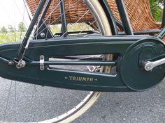 Vintage Bicycle Sidecar Chaincase