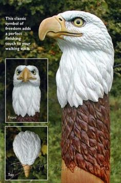 Bald Eagle Carving - Wood Carving Projects and Techniques | WoodArchivist.com