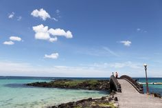 """Can't wait to go there with my family!!! Jeju Island, South Korea. """"Little Hawaii"""""""