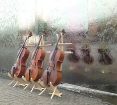 our Jolly cello stands in maple wood :)