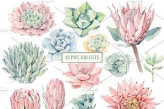 """I""""ve been in love with succulents long ago. It's a pleasure to paint them. I know that you also love succulents:) My new set is Pattern Illustration, Graphic Illustration, Illustrations, Watercolor Succulents, Carving Designs, Find Objects, Logo Design Inspiration, Logos, Graphic Design"""
