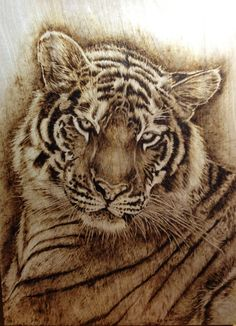 deviantART pyrography | Mirin (pyrography) by EEWinters