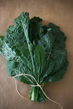 A bunch of kale w twine