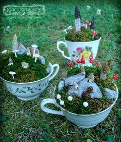 F: Fairy  Tea cup fairie garden.