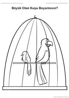 628 En Iyi Guguklu Saat Kafes Ve Kuşlar Görüntüsü 2019