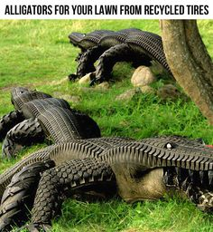 Alligators from recycled tires…