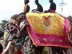 Indian Elephant procession