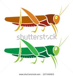 stock-vector-vector-image-of-an-grasshopper-on-white-background-127346903.jpg (450×470)