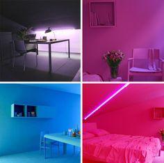 interior colors B