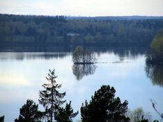 Lehijärvi Parola