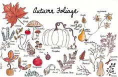 Autumn Foliage Autumnal Equinox, Digital Prints, Watercolor, Etsy, Fingerprints, Pen And Wash, Watercolor Painting, Watercolour, Watercolors